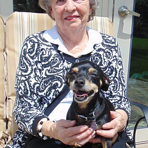 "Nancy Bond on her Calder Woods townhome patio with Scout, her 3-year-old ""chiweenie."""